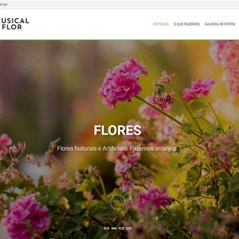 Website Florista Musical Flor em Castro Daire