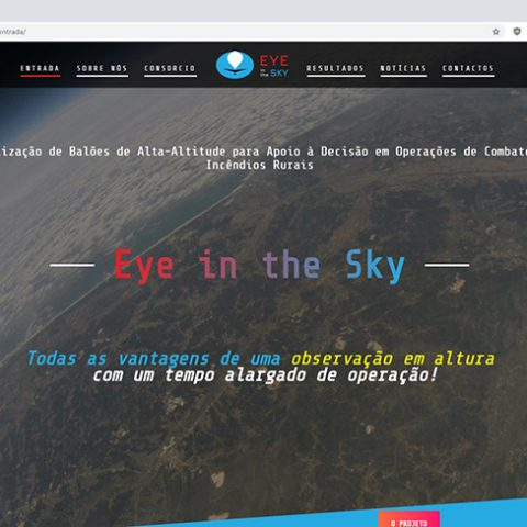 Website Eye in the Sky